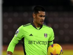 Scott Parker has hailed Alphonse Areola, pictured, for helping solidify Fulham's defence (Neil Hall/PA)