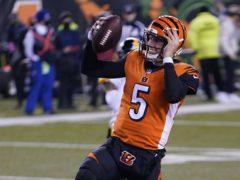 Cincinnati Bengals quarterback Ryan Finley (Bryan Woolston/AP)