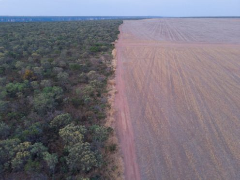 The Cerrado habitat in Brazil destroyed for soy plantations (David Bebber/WWF-UK/PA)