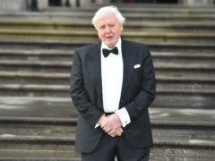 Sir David Attenborough is among the famous faces to have been vaccinated (Kirsty O'Connor/PA)