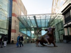 Hammerson, owner of Birmingham Bullring, saw rent collections fall (Jacob King/PA)
