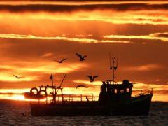 Some fishermen are now landing their catches in Denmark, Fergus Ewing said (Owen Humphreys/PA)