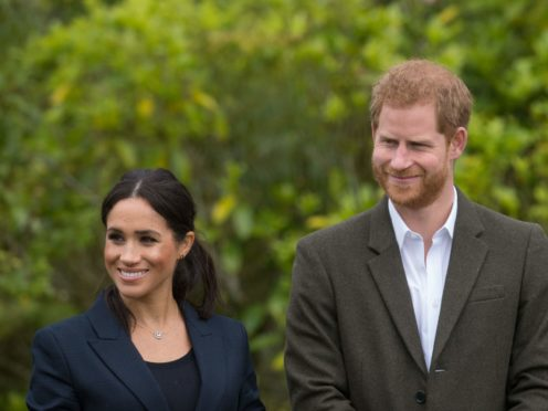 The Duke and Duchess of Sussex dropped in on an online gathering of Get Lit – Words Ignite (Dominic Lipinski/PA)