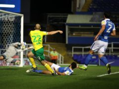 Teemu Pukki was on target for Norwich at Birmingham (Nick Potts/PA)