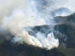 A wildfire north of Tokyo (Kyodo News via AP)