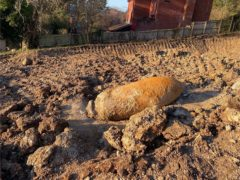 An unexploded Second World War bomb which was found in Exeter (MoD)
