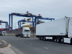 Freight trucks in Belfast port (Niall Carson/PA Wire)