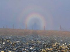 Liam Roberts spotted the phenomenon on Moel Eilio in North Wales (Liam Roberts)