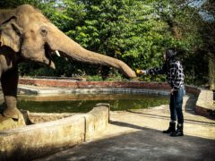 Cher said the power of social media led her on a quest to save the 'world's loneliest elephant' (Zoobs Ansari/Smithsonian/PA)