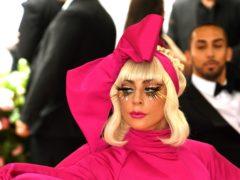 Two of Lady Gaga's French bulldogs were taken (Jennifer Graylock/PA)