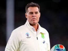 Rassie Erasmus will mastermind South Africa's challenge against the Lions (Adam Davy/PA)