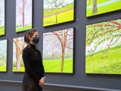 David Hockney: The Arrival of Spring, Normandy on display at one of the two new exhibitions at the Royal Academy (PA)