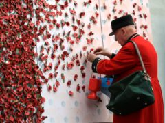 A member of the British Royal Legion adds a flower to a wall of poppies (John Walton/PA)