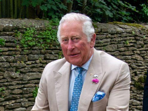 The Prince of Wales (Arthur Edwards/The Sun)