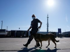 A member of security patrols with a dog during a Nato summit in Brussels (Francois Mori/AP)