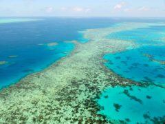 The Great Barrier Reef in Australia (Kyodo News via AP)