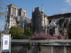 Notre Dame cathedral has been shroud in scaffolding (Francois Mori/AP)