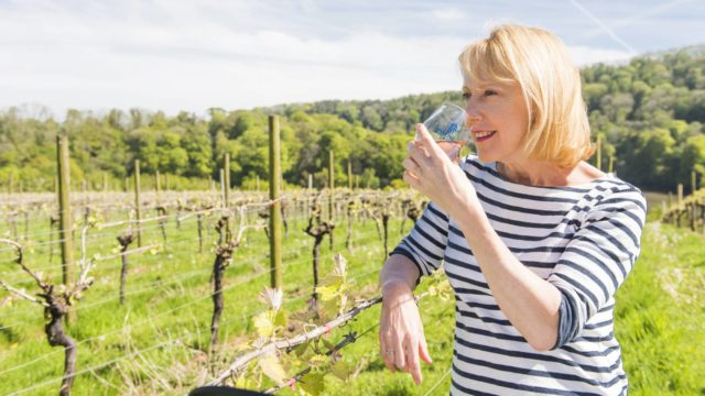Featured Image for Susy Atkins to share gin secrets at Taste of Grampian