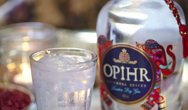 Featured Image for REVIEW: Opihr Gin