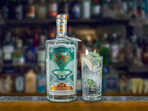 Featured Image for 9 of the best English gins