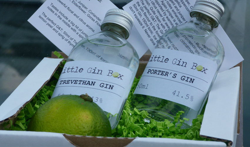 gin subscription services