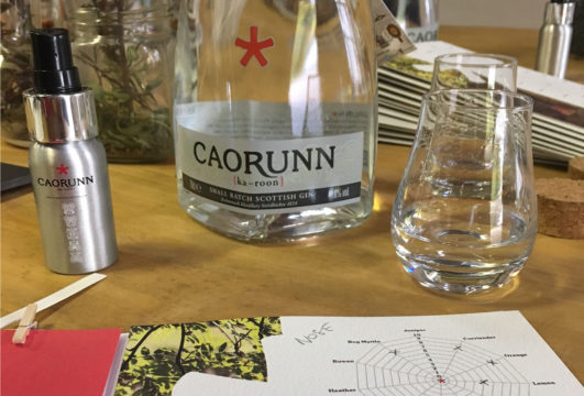 Featured Image for Reader Review: Caorunn distillery tour