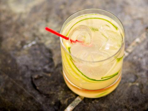 The Cynar Gin Fizz Cocktail
