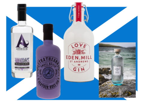 Featured Image for The 4 new essential Scottish gins