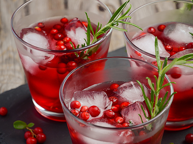 Featured Image for Cranberry gin and tonic, with Tarquin's Mulled Cranberry & Tangerine Gin
