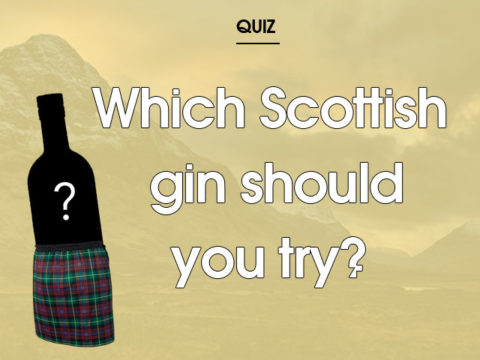 Featured Image for Which Scottish gin should you try?