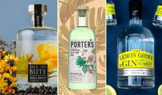 Featured Image for 7 Bright Gin Bottles That Will Totally Lift You Out of the January Blues