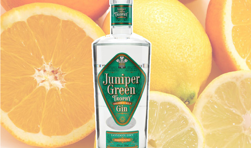 Featured Image for These 10 Organic Gins Have the Feel-Good Factor We All Deserve