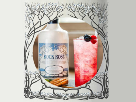 Featured Image for Poinsettia Gin Punch Cocktail, with Rock Rose Winter Edition
