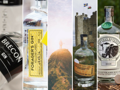 Featured Image for Watch out: Welsh and Irish gin are set to take off in 2018