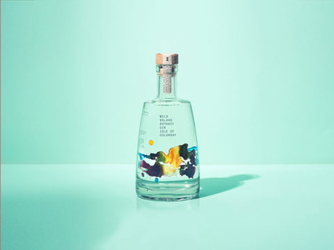 Featured Image for REVIEW: Wild Island Gin
