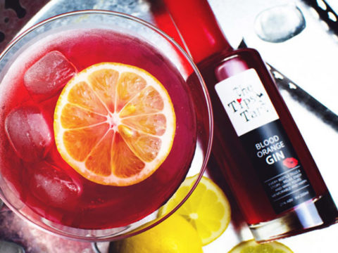 Featured Image for Tipsy Tart's Blood Orange Gin makes the perfect ruby cocktails