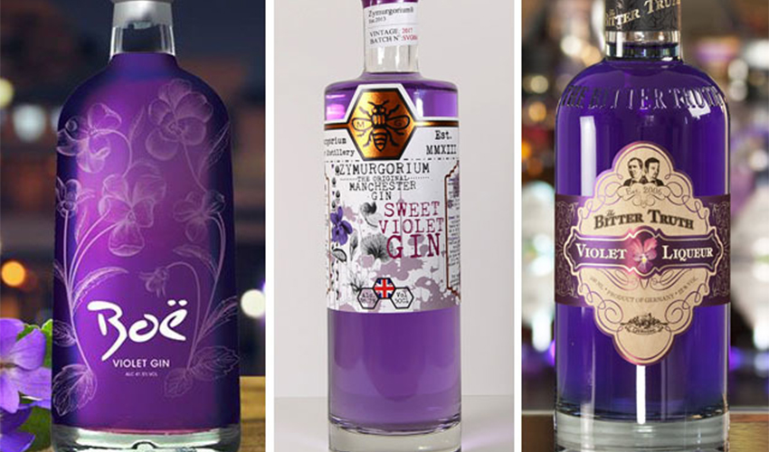 Featured Image for 7 Violet Gins You Ought to Try
