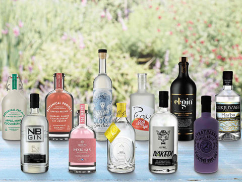 Featured Image for The Aldi Gin Festival is coming back and bigger than before