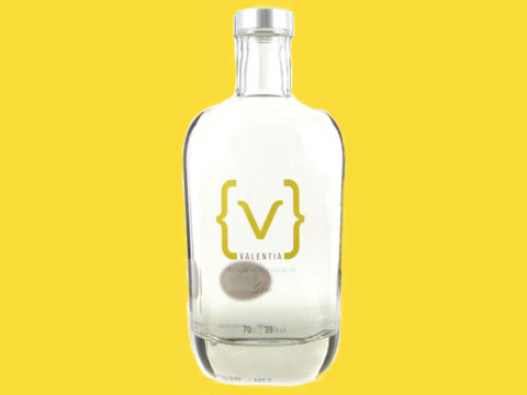 Featured Image for REVIEW: Valentia Gin