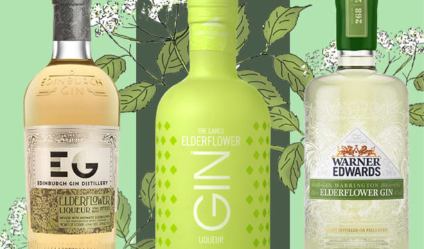 Featured Image for 7 Gorgeous Elderflower Gins That Are Summer in a Glass