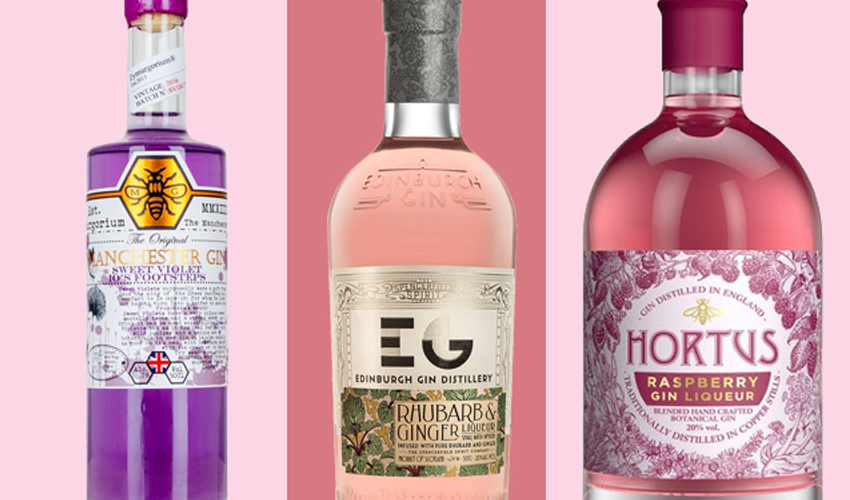 Featured Image for The 21 Best Gin Liqueurs to Drink