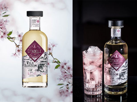 Featured Image for Citadelle Gin's special editions will blow you away