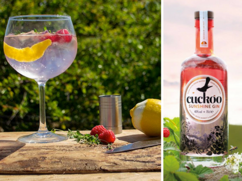 Featured Image for Cuckoo Sunshine Gin is all the honey, raspberry goodness we need right now