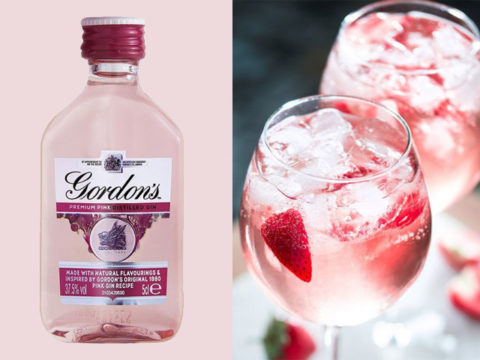 Featured Image for Pink gin miniatures are the perfect pocket sized treat