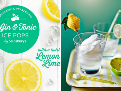 Featured Image for Sainsbury's gin lollies have arrived and they're cheaper than Aldi's
