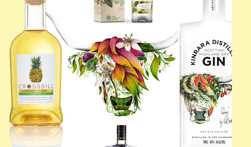 Featured Image for 9 New Scottish Gins to Put on Your Radar Immediately