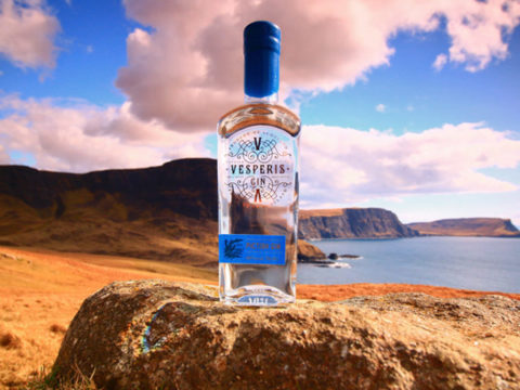 Featured Image for 10 fantastic gins from around Scotland to celebrate World Gin Day