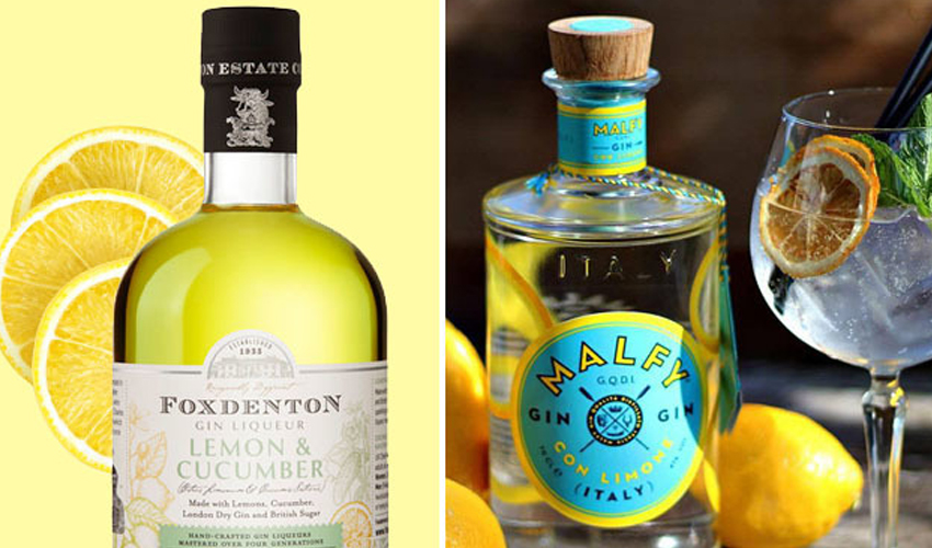 Featured Image for 9 Citrus Gins That Are Just So Refreshing