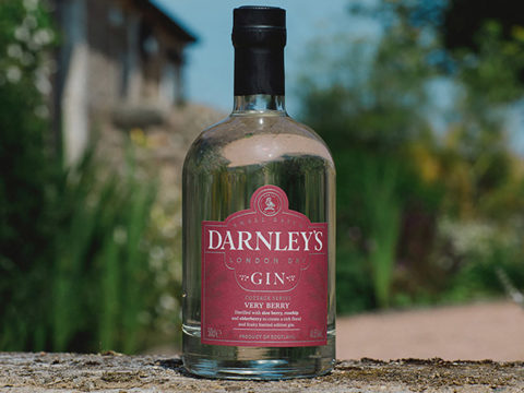 Featured Image for Darnley's has launched a Very Berry gin