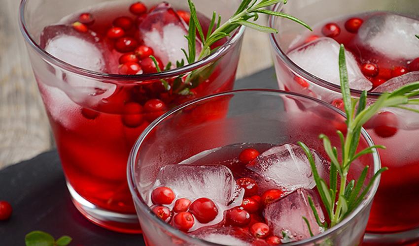 gin mixers